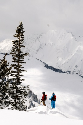 Backcountry_web_size