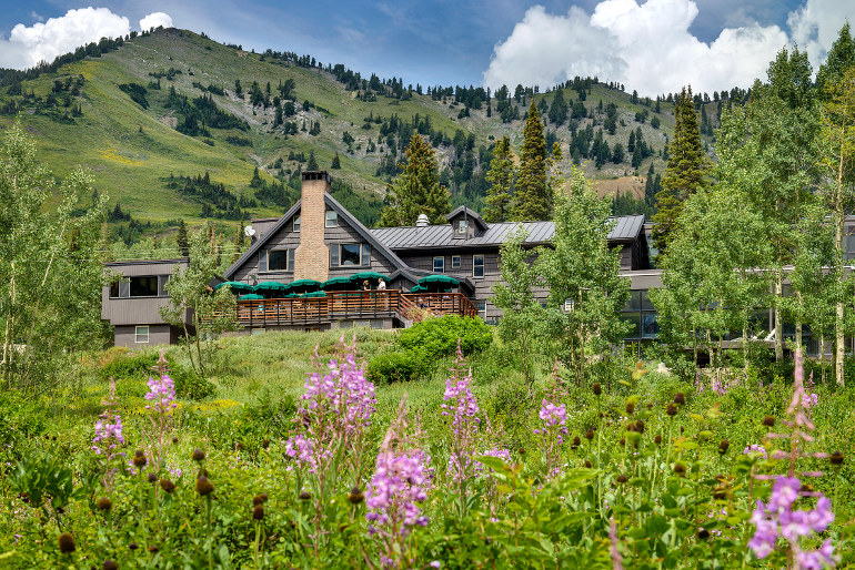Photos of the Alta Lodge with wildflowers and mountain views